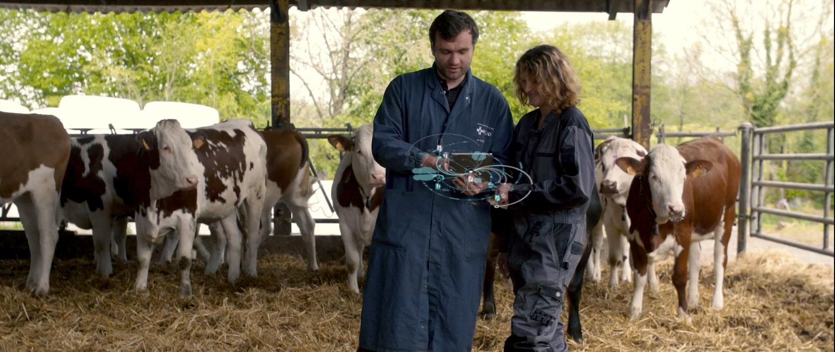 Fonctionnalité application vénotis santé animal vétérinaire éleveur